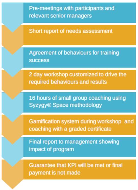 premium syzygy customised corporate training program guarantee